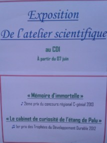 """Exposition des Travaux des """"Lauréats 2012 et 2013"""" de l'Atelier Scientifique : au CDI du Collège"""