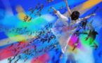 """Représentation du spectacle danse/numérique """"Angélique et l'oiseau"""" (3°E)"""