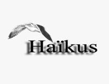 Haïkus