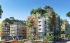 Un projet de micro forêt-urbaine dans la ville de Nice