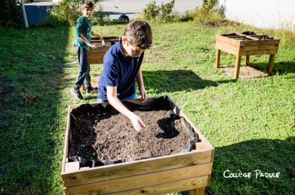 Novembre: démarrage de l'atelier jardin
