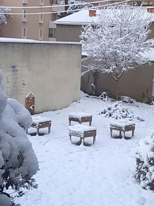 Notre jardin sous la neige...