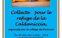 COLLECTE AU PROFIT DU REFUGE DE CALDANICCIA