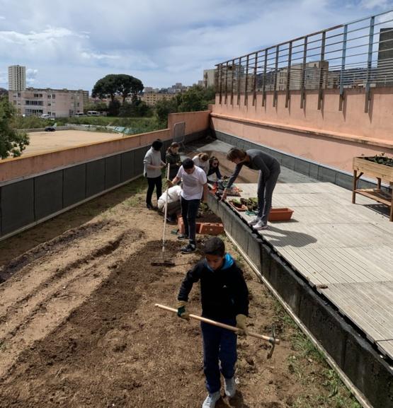 un chercheur au collège : création de notre jardin