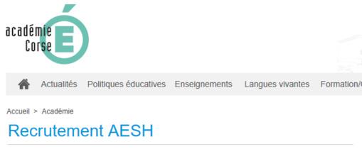 AESH / AVS / Accompagnants des Elèves en Situation de Handicap