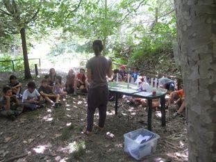 """""""Journée de l'énergie"""" organisée par l'APIEU le 17 juin 2011"""